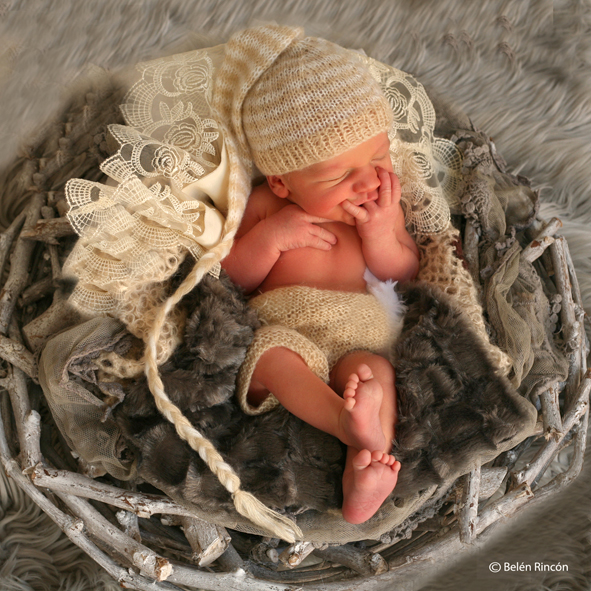 sesión newborn. Martín sobre un nido